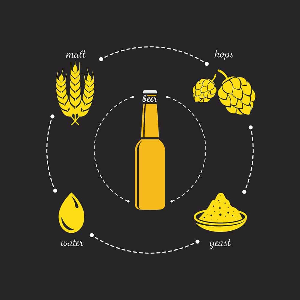 4 Main Ingredients in Beer
