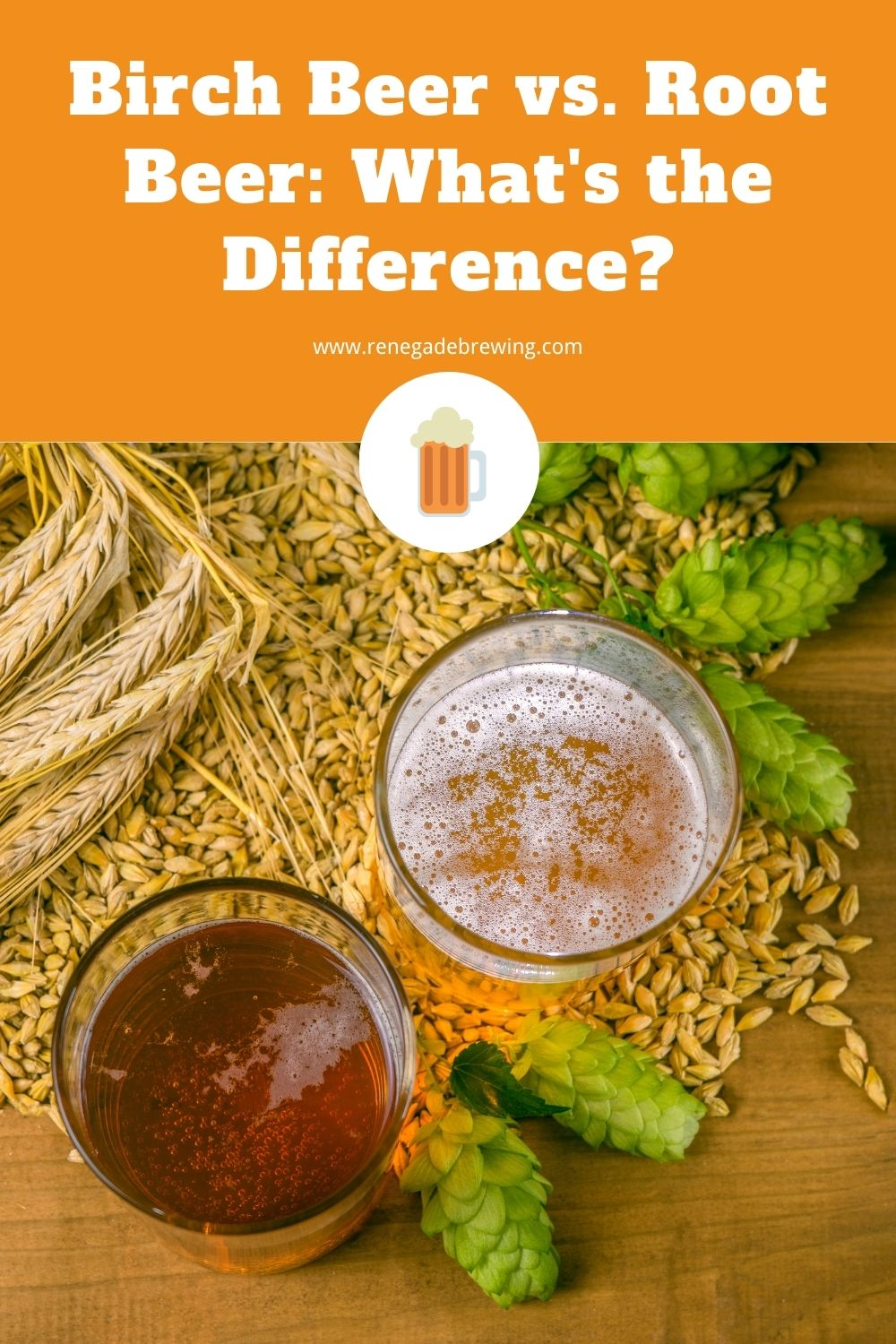 Birch Beer vs. Root Beer What's the Difference 1