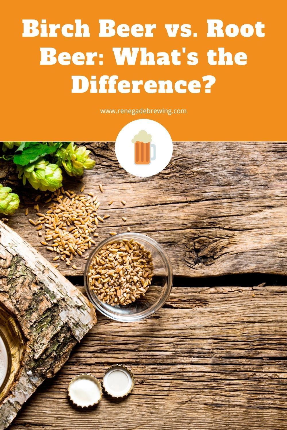 Birch Beer vs. Root Beer What's the Difference 2