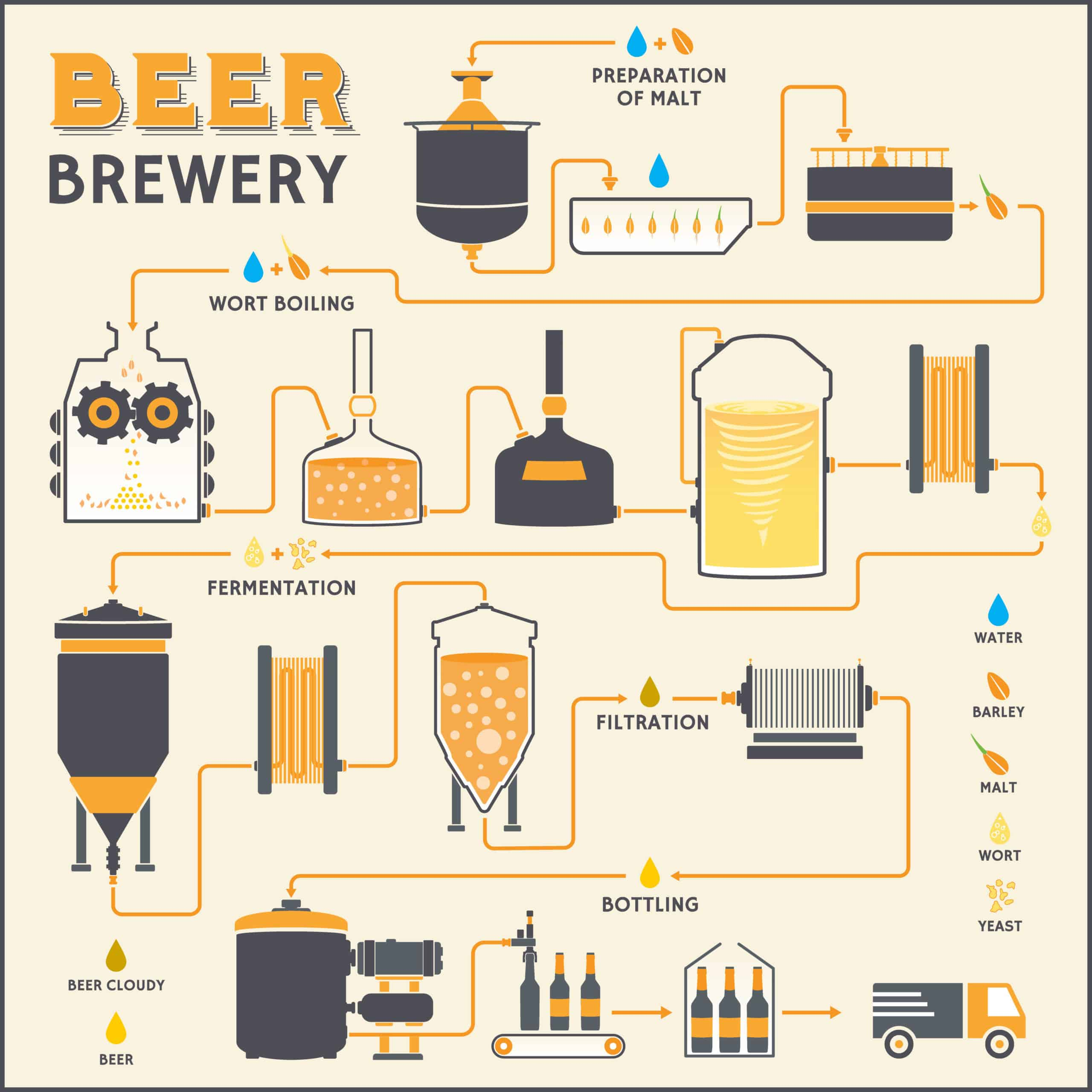 What is beer Brewing