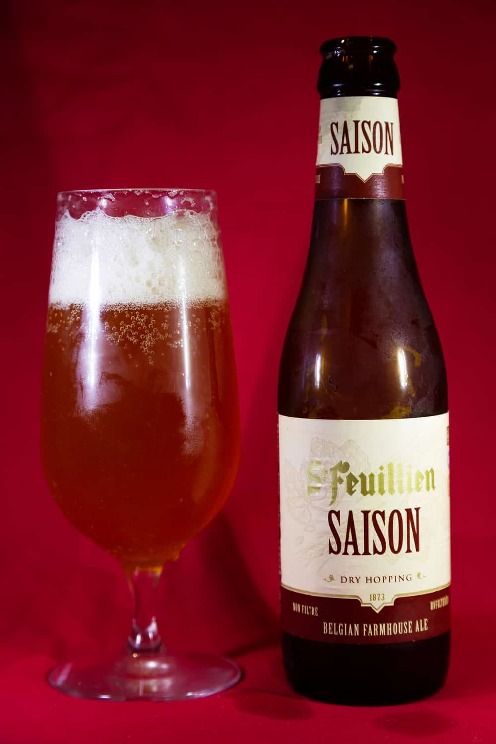 15 Best Saison Beers You May Like