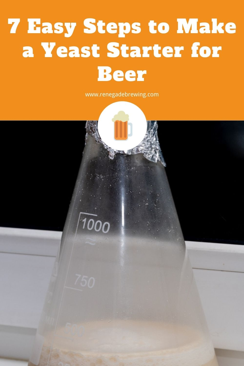 7 Easy Steps to Make a Yeast Starter for Beer 2