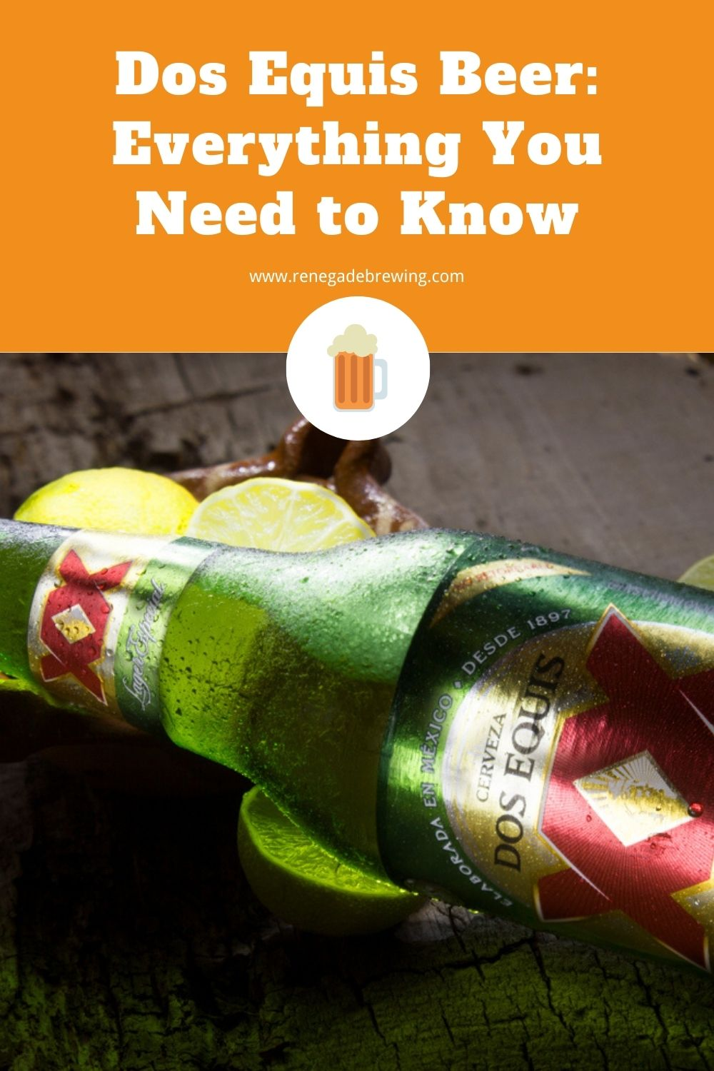 Dos Equis Beer Everything You Need to Know 2