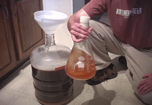 Pitch your yeast starter