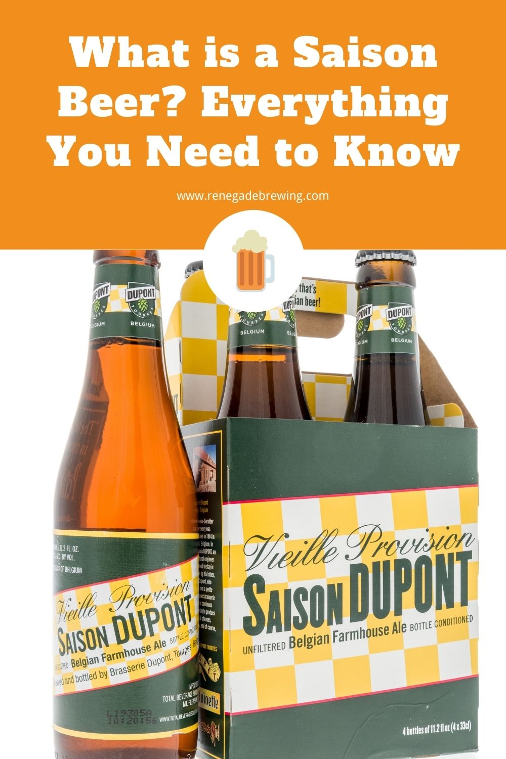 What is a Saison Beer Everything You Need to Know 1