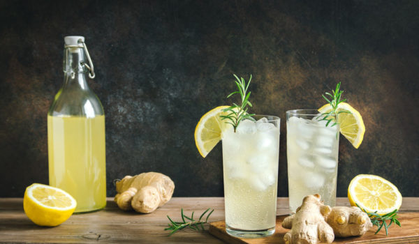 15 Best Ginger Beer Brands You May Like