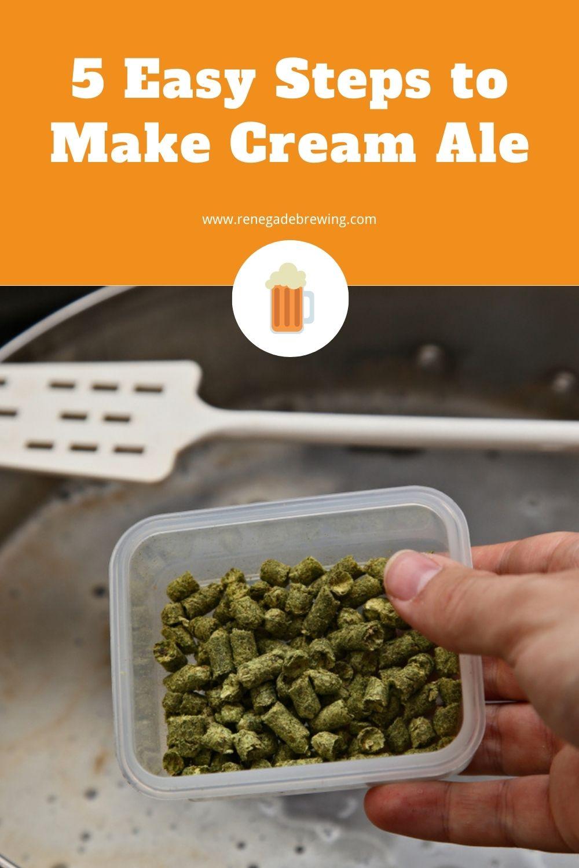 5 Easy Steps to Make Cream Ale 2