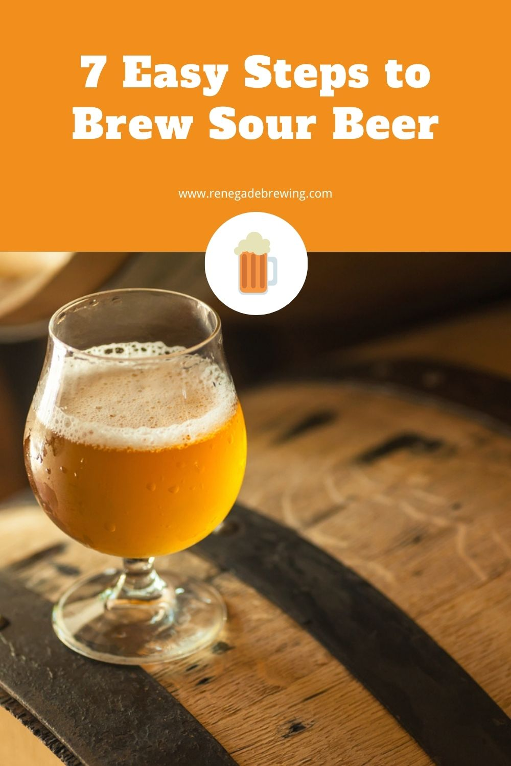 7 Easy Steps to Brew Sour Beer 2