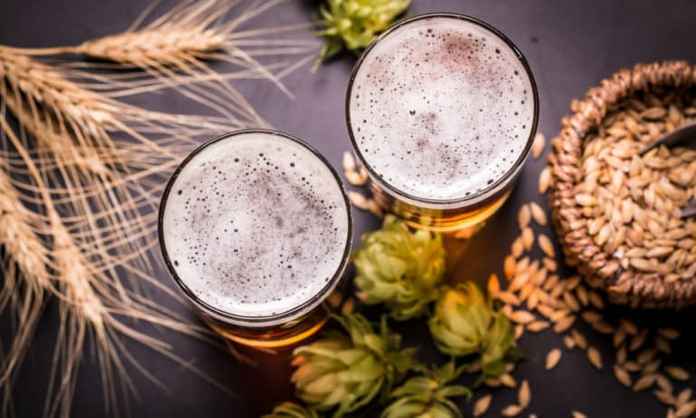Pilsner vs. Lager What's the Difference