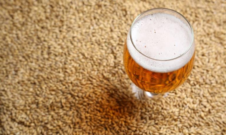 What is Malt in Beer