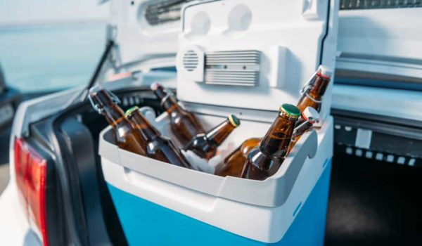 7 Best Beer Coolers of 2021 – Reviews & Buyer Guides