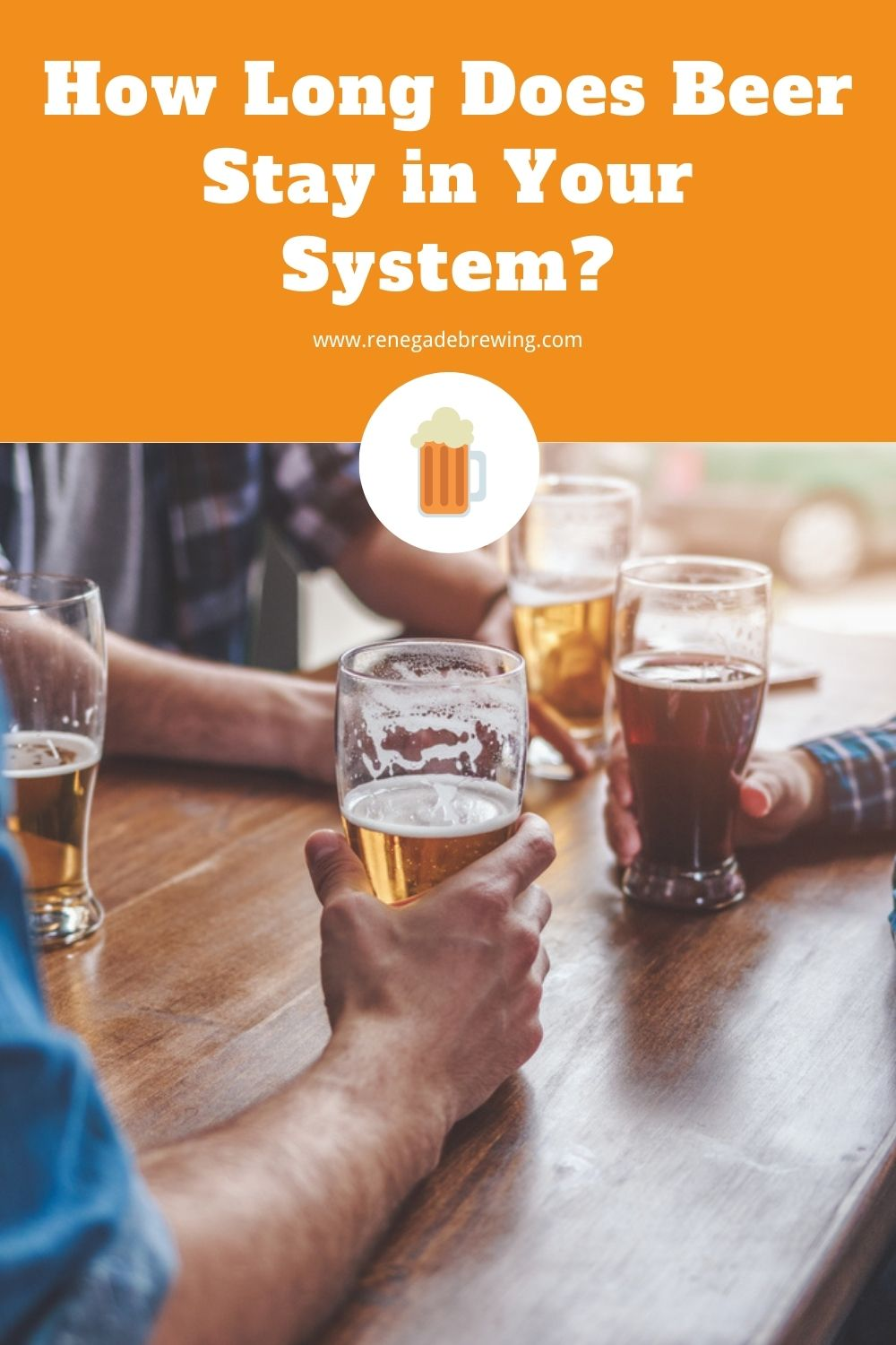How Long Does Beer Stay in Your System 1