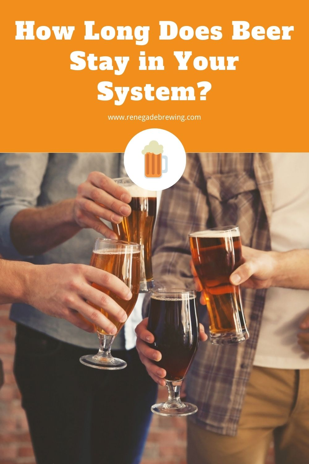 How Long Does Beer Stay in Your System 2