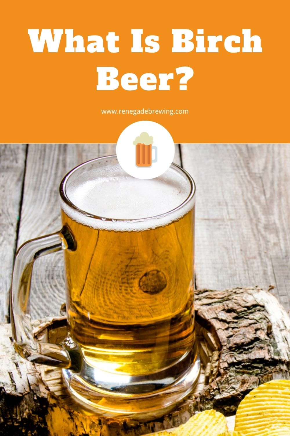 What Is Birch Beer (Definition, History & Recipe) 2