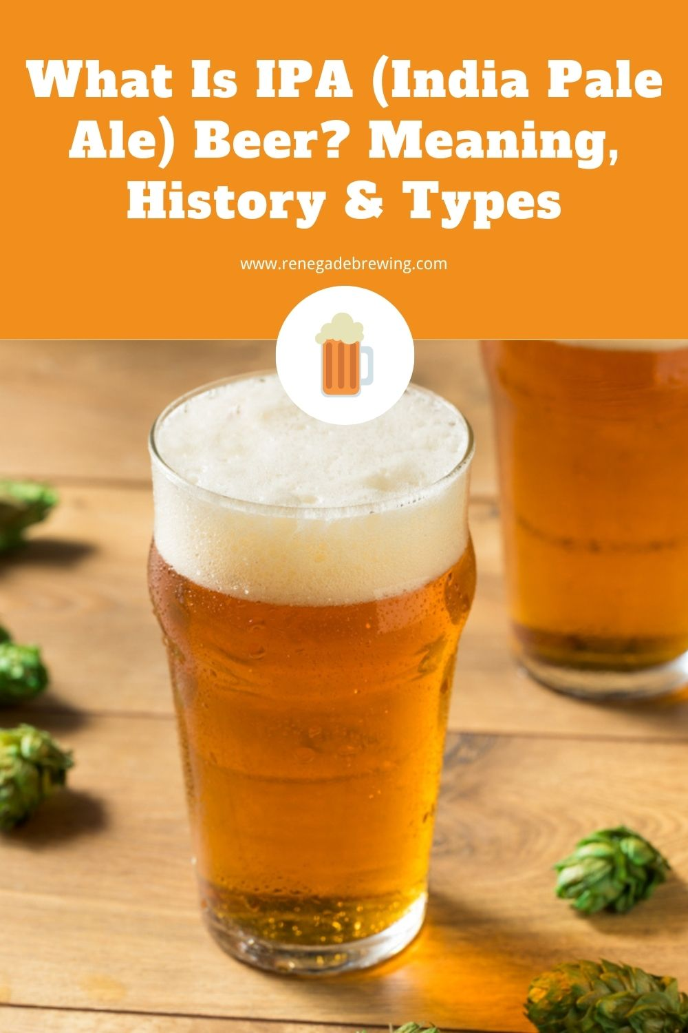 What Is IPA (India Pale Ale) Beer Meaning, History & Types 1
