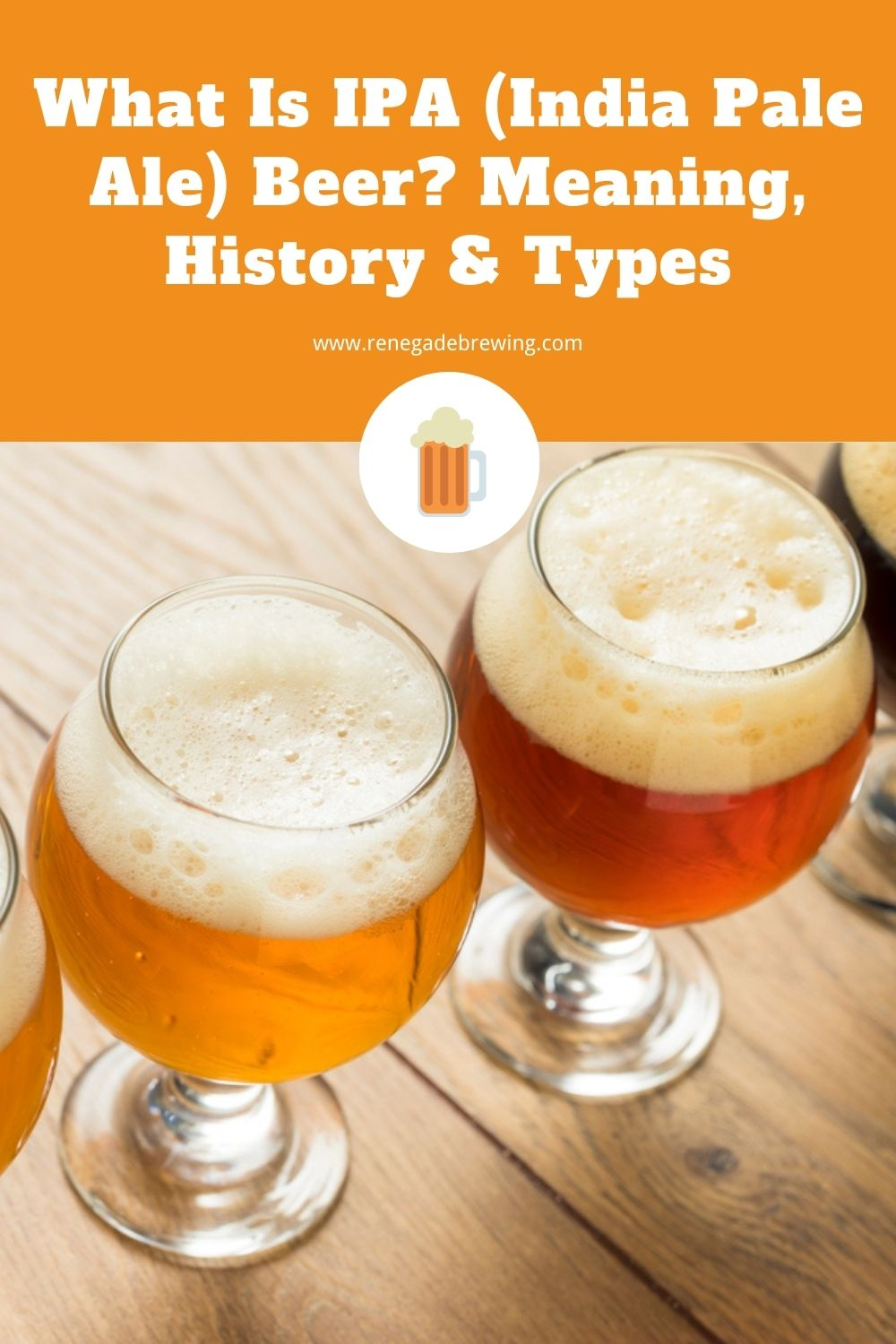 What Is IPA (India Pale Ale) Beer Meaning, History & Types 2