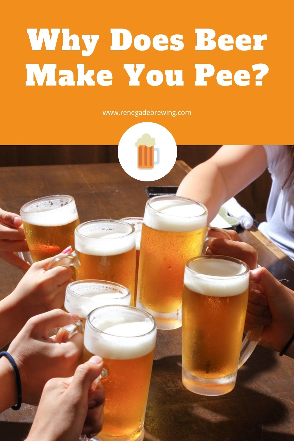Why Does Beer Make You Pee 1